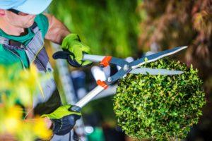 Pflege Grünanlagen